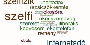 2014. szavai (Tinta Kiadó)