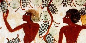 Ókori egyiptomiak szőlőtermesztése (Fotó: Egypt Exploration Society)