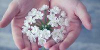 Virág, kéz