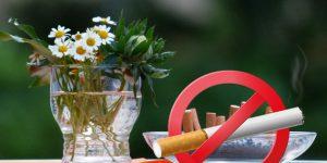 Dohányzásellenes, dohányzás, virág
