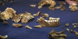 Daganatos ősemberi csontkövületek Dél-Afrika egy barlangjában (Fotó: BBC News)