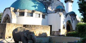 Az Elefántház a Fővárosi Állat- és Növénykertben (MTI Fotó: Kovács Attila)