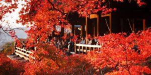 Japán, Kiotó (Fotó: Japánspecialista)
