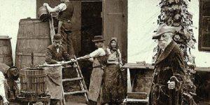 Jókai Mór a Svábhegyen szüret idején, 1898 (Fotó: PIM)