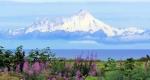 Alaszkai Volcano Obszervatórium nyáron, Alaszka (Fotó: pixabay.com)