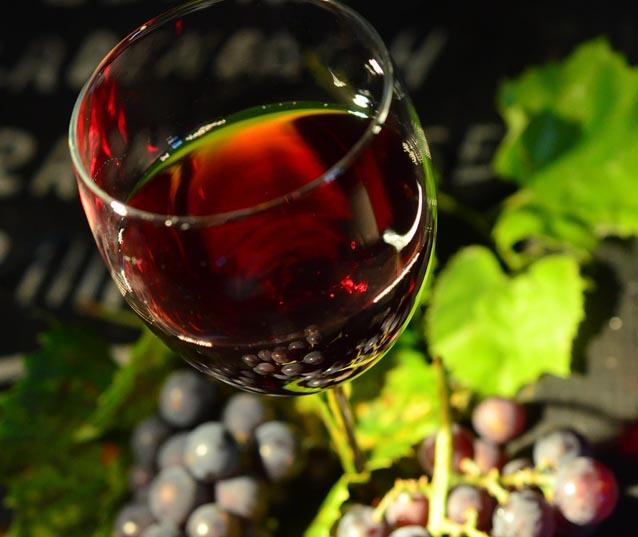 Toszkána – bor és olíva