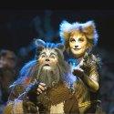 Andrew Lloyd Webber: CATS - Macskák musical (Fotó: Alessandro Pinna)